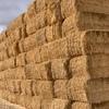 barley header trail straw