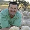 Podcast - Listen to AWI's Marius Cumming interview progressive Sheep breeder Nigel Kerin