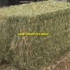 80mt Barley Hay 600+kg 8x4x3 Bales