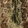 Clover/Rye Hay .  330 Bales