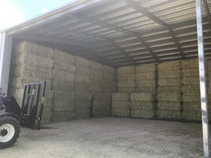 Premium uncontracted export quality hay