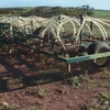 CHAMBERLAIN   300   GREEN 40FT CULTIVATOR WITH HOSE KIT AND PRESS WHEELS