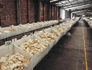 Wool Market's EMI dips 14c/kg