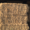 Big Square Hay Bales 4x3x8