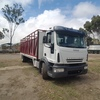 2006 Iveco Eurocargo Truck & Cattle Crate