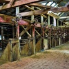 A bid to save iconic Toganmain Woolshed