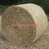 1,000 5x4 Rolls of Wheaten & Rye Hay For Sale Delivered - starting in about a week.