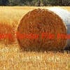 Large Quantity of Oaten Hay Rolls (Price Per Ton)