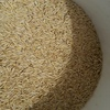 Oats ( Bannister Graded  ) - 16 m/t