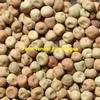 2.5 MT Kasper Pea Seed - Graded