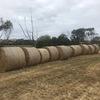 20 x hay rounds