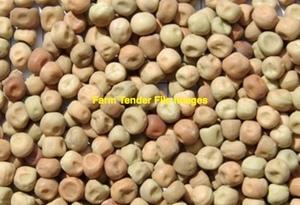 350mt Field Peas ex farm