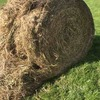 50 Rolls of Wheaten and Rye Hay