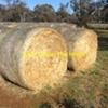 Barley Hay Round bales.