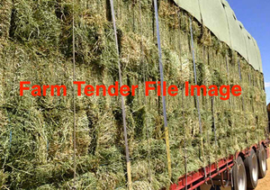 Lucerne Hay in Small Square Bales