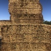 200 x 2016 50% Vetch/Medic Hay Stacked and Capped