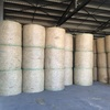 230 4x4 Bales of Rhodes Grass Hay