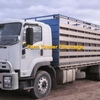 Good Quality Truck with Livestock Crate Wanted