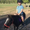 Mini Pony. Approx 6 years old/8-9hh