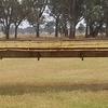 41FT bogey hay trailer