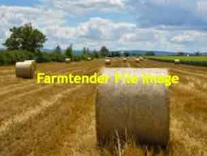 70 x Wheaten Straw 5x4 Bales + Freight (NSW Area Only)