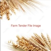 Frame Or Corack Wheat Wanted  x 1,200 m/t For All Year Round Supply Approx 100 m/t Per Month