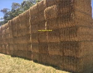 250mt Barley Straw 500-530kg 8x4x3 Bales (Shedded)