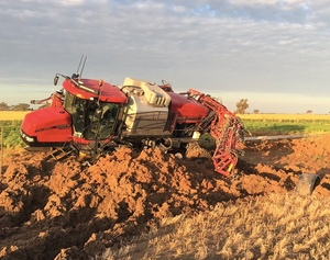 Are you bogged mate? By Mary O'Brien
