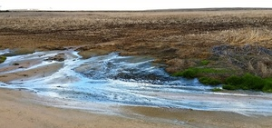 Report states unmanaged Mallee seeps could see losses of $100 million over a 10 year period