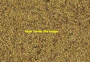 Lucerne Seed 25kg Bags