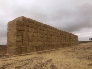 137mt Header Trail Barley Straw 8x4x3 Bales average 480kg