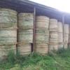 Lucerne Hay 2nd Cut 5x4 Bales