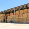 Barley/Rye Hay 700 x 550kg Approx Bales 8x4x3