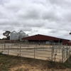 Dairy farm for lease