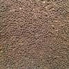Vetch Seed -  Radish FREE.  Rust resistant.    Ex-farm