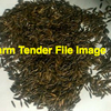 Saia Oat Seed -  Professionally Cleaned  36tonne