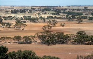 Australian Farmers joins chorus for climate action
