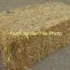 Small Square Bales of Oaten Straw