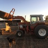International 786 tractor with Challenge FEL, bucket and forks in good condition