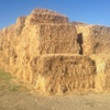 Oaten Hay in 8x4x3 Square Bales For Sale -  About 600kgs Per Bale