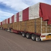 Fodder, Water & Livestock freight assistance continued in Queensland