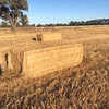 180 Tonne Oaten Straw, 8x4x3 bales, Avg 400+ kg/Bale. Bright & Very Clean.
