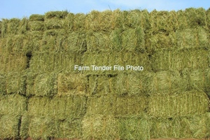 1400 Ryegrass Mix Small Bales (Seller to Freight)