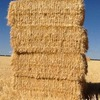 400/mt of Barley Straw, Header trail, 8x4x3
