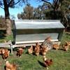 Chicken Feed Trailer