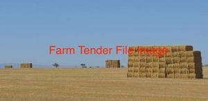 2 x Semi loads of Organic Millet Hay 7x4x3