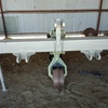 Under Auction - In-line Cultivator - 2% + GST Buyers Premium On All Lots
