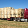 Transport Operator / Truck Driver Wanted for 6-8 Weeks of Drop Deck Hay Work - Northern Vic to Gippsland Each Day