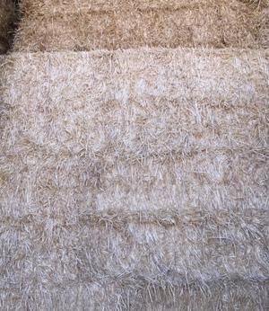 Barley Straw, Shedded, 8x4x3 (approx. 500kg bale weight)