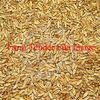 27mt Triticale Grain